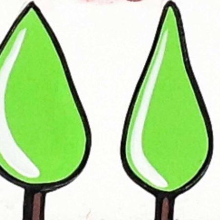 cipressi verdi shock