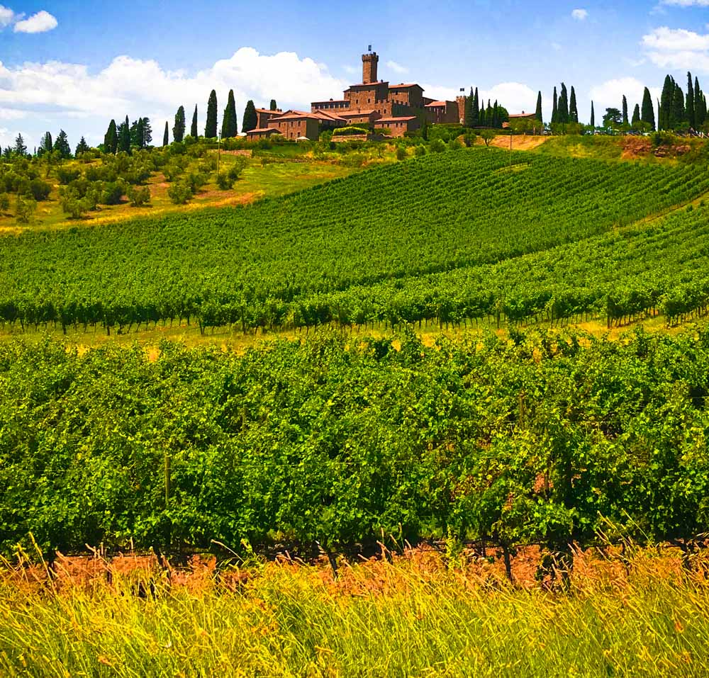 Castello Banfi photo color - Iguarnieri